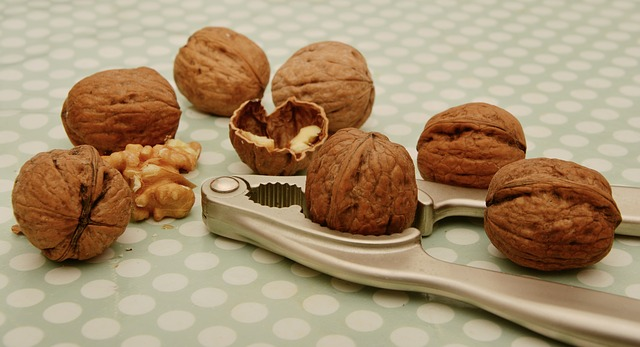 vlašské ořechy a louskáček