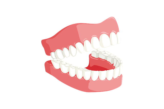 ukázka zubů
