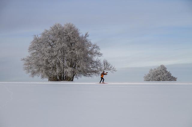 běžkař v krajině